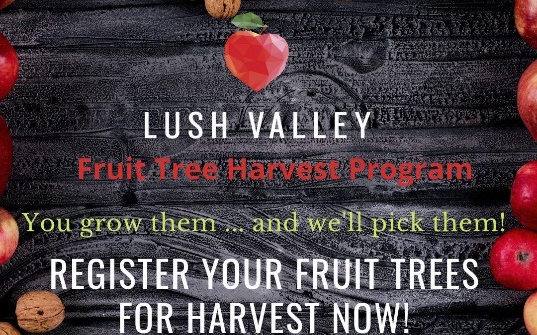 2020 Harvest Season Volunteer Update