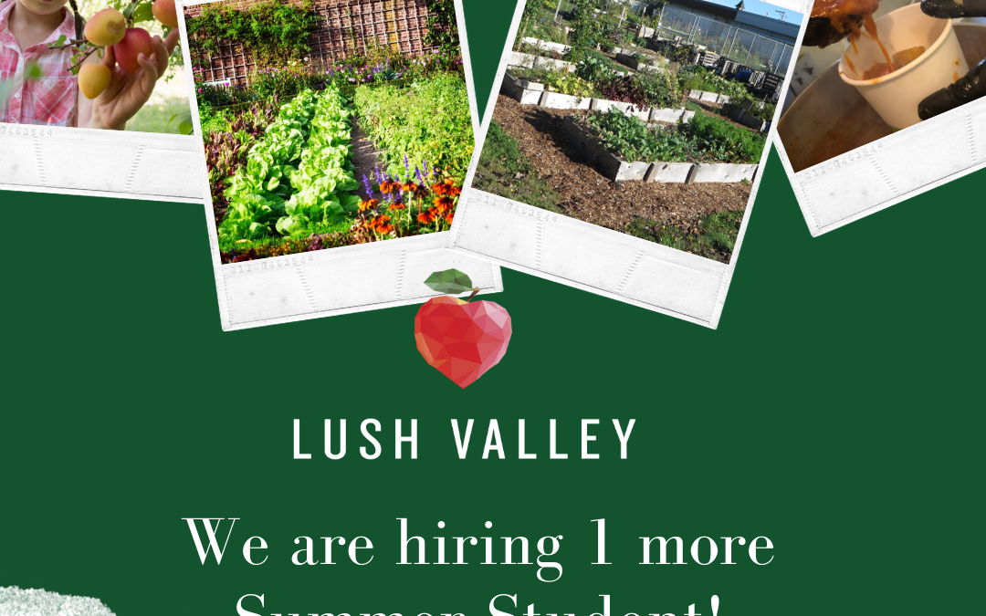 LUSH Valley hiring one more summer student