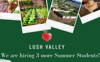 LUSH Valley hiring three more summer students