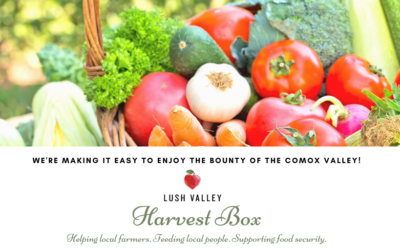 Introducing the new 'Harvest Box' Program