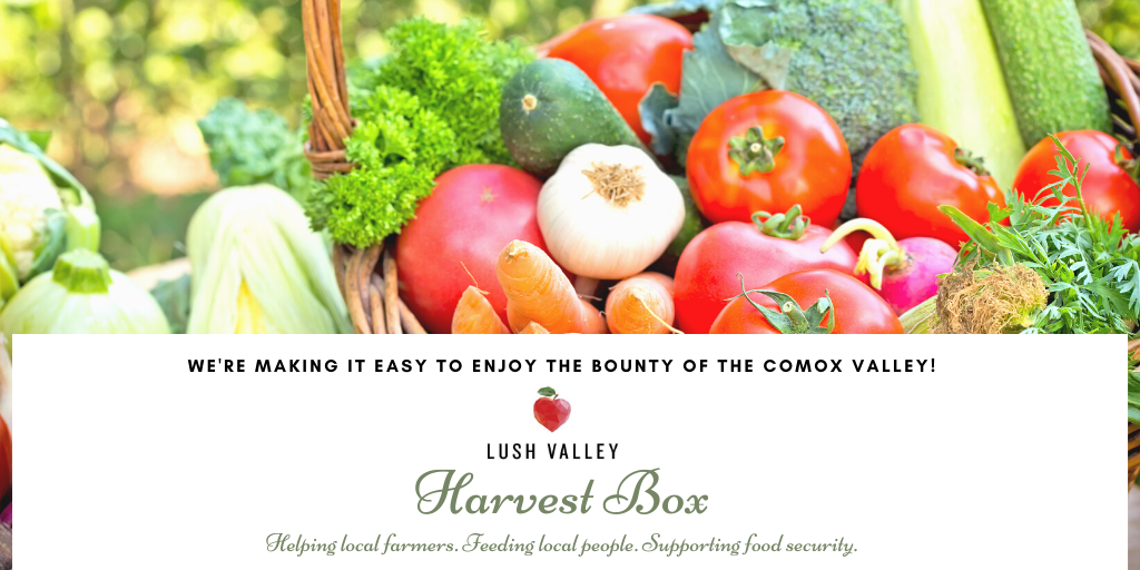 Introducing the new 'Harvest Box' Program