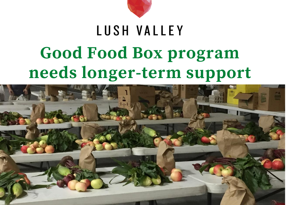 Good Food Box needs longer-term support