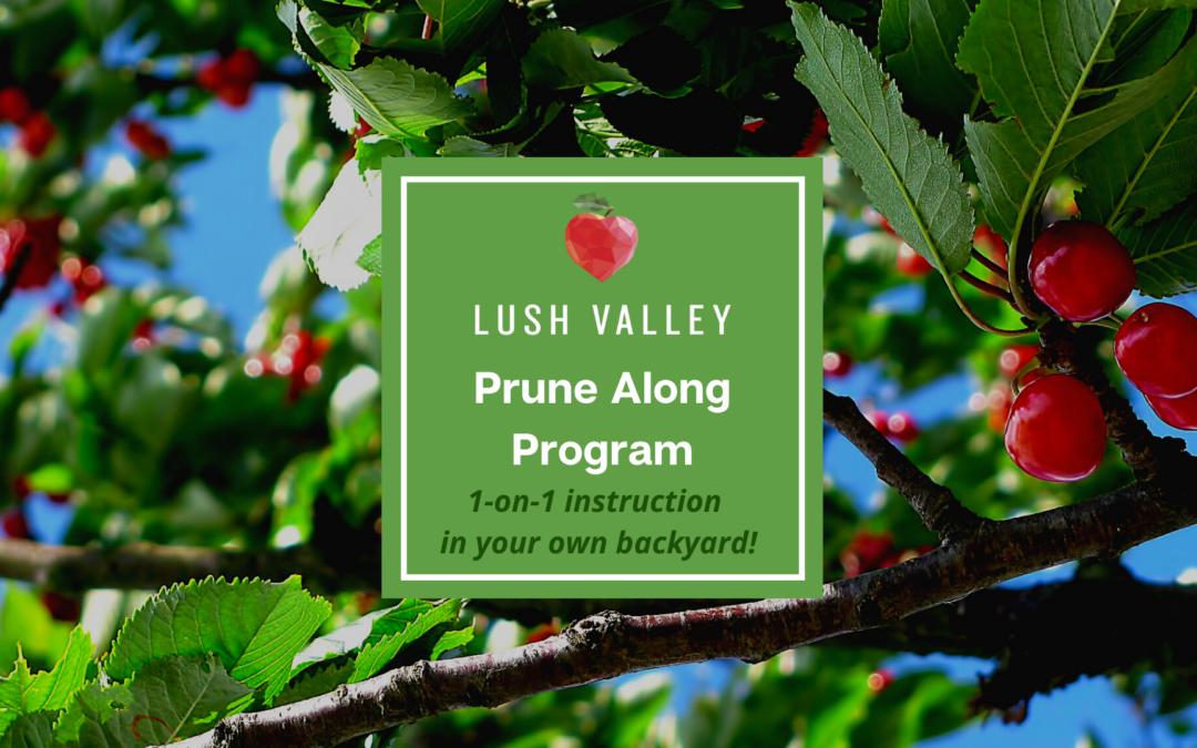 Our Prune-Along Program is Back!