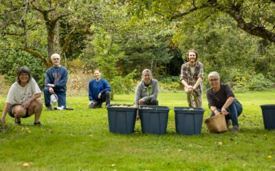 LUSH Valley Seeks Volunteers for Fruit Tree and Farm Gleaning Programs!